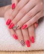 Services Gel Manicure